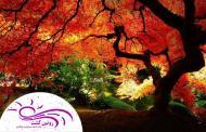 پاییز کجا سفر کنیم؟ (2)